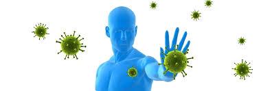 immunschwäche symptome immunschwäche thierolf
