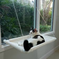 best 25 pet hammock ideas on pinterest cat hammock diy cat bed