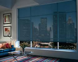 Roll Up Window Shades Home Depot by Window Blinds Window Blinds Custom Designer Screen And Roller