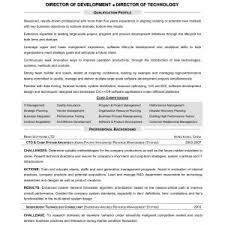 resume exles for sle information technology resume objectives best of health