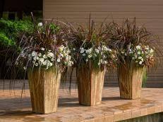 13 terrific grasses hgtv