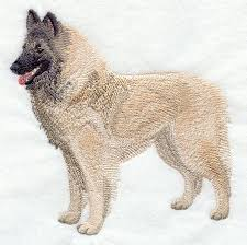 belgian shepherd tervuren 101 machine embroidery designs at embroidery library embroidery library