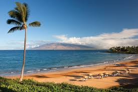 hotel resort maui resort pool day pass