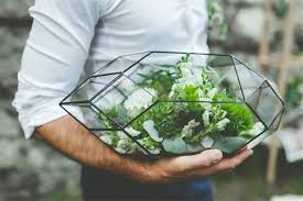 handmade glass terrarium modern planter for indoor gardening