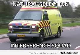 10 natural selection interference squad meme pmslweb