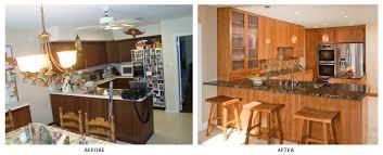 Cool Kitchen Remodel Ideas Kitchen Enthrall Kitchen Remodel Compelling Kitchen Remodel