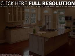 home depot custom cabinets cost best home furniture decoration