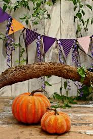 halloween photo backgrounds best 20 halloween photography backdrop ideas on pinterest
