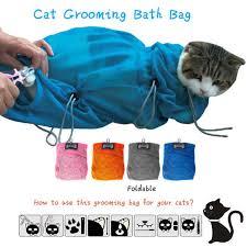 Hair Dryer Khusus Kucing cara membersihkan telinga kucing panduan cara memandikan