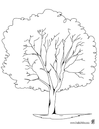 picture of a tree to color free coloring pages on art coloring pages