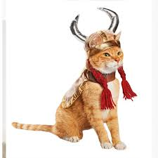 Halloween Costumes Cat 25 Halloween Costumes Cats Ideas Cat