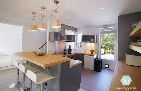 maison conviviale cuisine ouverte avec bar bois colombes