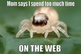 Cute Spider Meme - cute spider weknowmemes