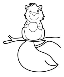squirrel coloring pages 5 nice coloring pages kids