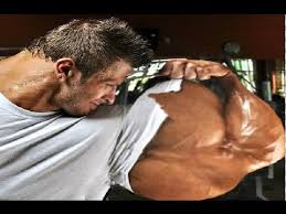 top 6 best arms in history of bodybuilding
