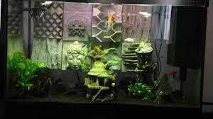 idee deco aquarium décoration d u0027aquarium original recif youtube