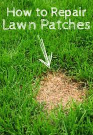 easy step by step diy guide to learn how to repair lawn patches