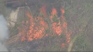 Wildfire Rap Song by Firefighters Battle Large Brush Fire