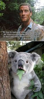 Funny Australia Day Memes - 2126 best mick funny images on pinterest ha ha funny pics and