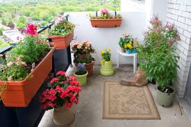 balcony gardening ideas balcony gardening an oasis in the sky