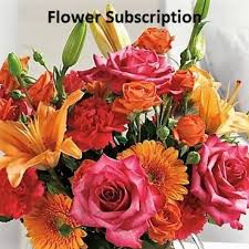 monthly flower delivery olive branch florist flower delivery by the yellow florist