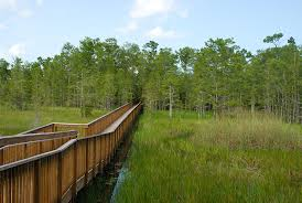 Florida scenery images Best scenic hikes in florida florida hikes jpg