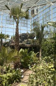 South Texas Botanical Gardens by 45 Best Things To Do In Amarillo Tx Images On Pinterest Texas