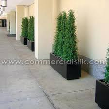 outdoor artificial topiary trees outdoor boxwood topiary plants