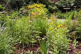 discovering the secret gardens of princeton