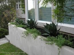 landscape designer san anselmo dig your garden creates beautiful