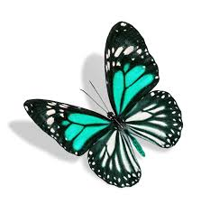 what s the meaning of a blue butterfly and what does it signify