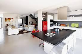 les cuisines à vivre grande pièce à vivre lumineuse à dominante blanc cendrine
