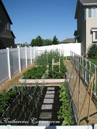 we are growing cucumbers on trellis this year katherines corner