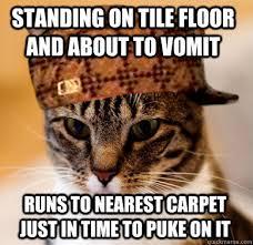 Puke Meme - why do cats throw up on carpet home the honoroak