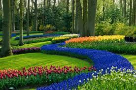 Backyard Landscaping Design Ideas Landscape Design Ideas And Garden Design Ideas