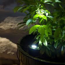 Garden Led Solar Lights solar lights lights4fun co uk