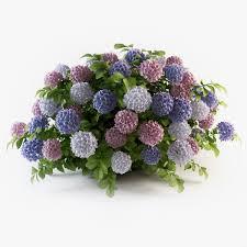 Hydrangea Flowers Hydrangea Flowers 3d Cgtrader