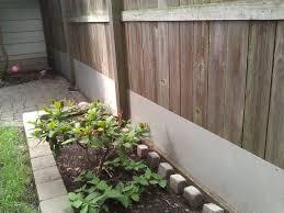 resolve pest solutions chicago u0027s rat u0026 mouse pest control