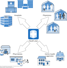 how health care is organized u2014ii health delivery systems