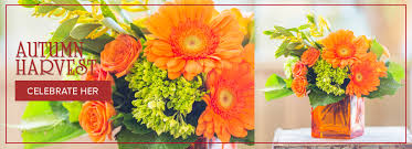 Flowers In Denton - high point florist flower delivery by grace flower shop inc