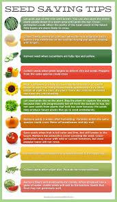 536 best gardening tips tricks u0026 clever ideas images on pinterest