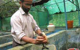 success saga in inland farming the hindu