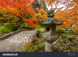 japanese garden pictures seattle japanese garden fall foliage stock photo 355258280