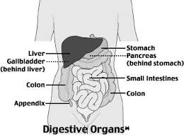 section i common health problems abdominal