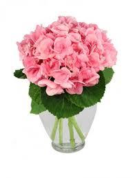balloon delivery el paso tx hydrangea happiness bouquet in el paso tx como la flor flowers