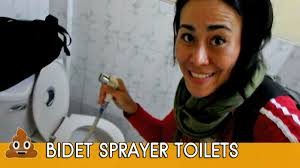 Bidet Define How To Use Bidet Sprayer Toilets Aka Bum Guns In Thailand