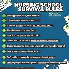 10 Must Nursing Essentials Nursefuel by Best 25 Nursing Tips Ideas On Nursing