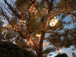 tree chandelier chandelier 45 inspirational chandelier tree sets high definition