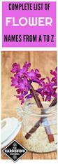best 25 list of flowers ideas on pinterest butterfly plants
