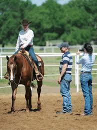 horse saddle test ride that saddle horse u0026rider western training how to